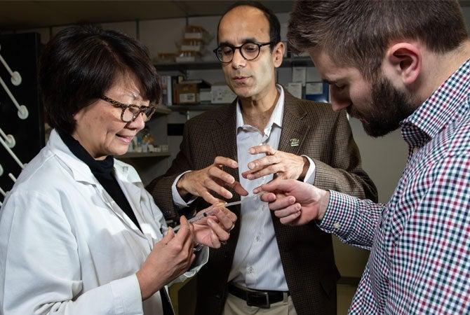 Researchers discuss ideas in a lab