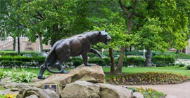 Panther statue surrounded by trees
